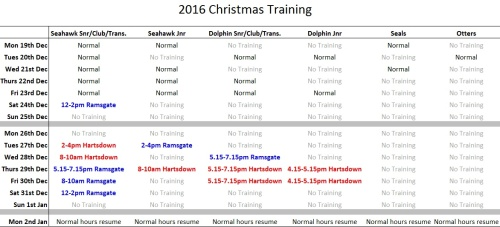 christmas-training-v3